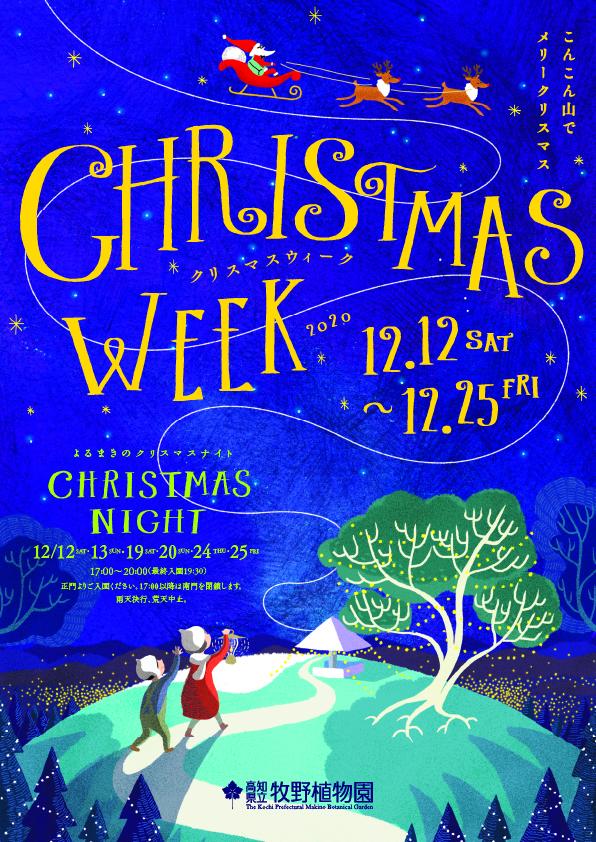 Christmas Week 2020